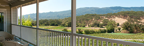 porch of a home in california wine country facing vineyard in sunny day