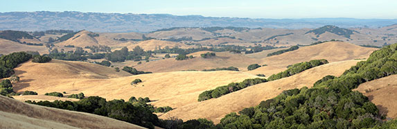 view of hills in petaluma